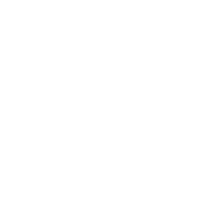 Prince of Wales's logo